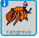 cangrexo