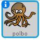 Polbo